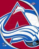 Colorado Avalanche 2011 Team Logo Photo