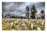 The Endless Rows of Arlington Cemetery Premium Photographic Print by Trey Ratcliff