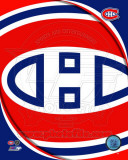 Montreal Canadiens 2011 Team Logo Photo