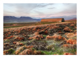 Red Fields on the Tundra Reproduction photographique sur papier de qualit&#233; par Trey Ratcliff