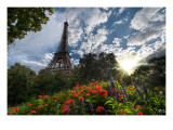 Another Summer Day in Paris Premium Photographic Print by Trey Ratcliff