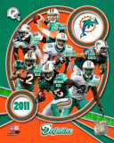 Miami Dolphins 2011 Team Composite Photo