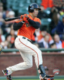 Carlos Beltran 2011 Action Photo