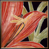 Red Amaryllis with Stem Posters by Roberta Ahrens