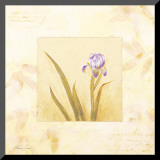 Lilas Composicion IV Mounted Print by  Atenea