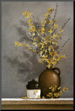 Forsythia Mounted Print by Ray Hendershot