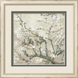 Almond Branches in Bloom, San Remy, c.1890 (tan) Framed Giclee Print by Vincent van Gogh