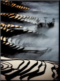 China, Yunnan Rice fields Mounted Print by Yann Layma