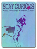 Stay curious Wood Sign