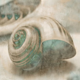 Coastal Gems II Prints by John Seba