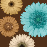 Daisy Quartet II Prints by Lindsay Blake