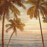 Palms on the Water II Prints by John Seba