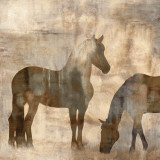 Equine II Prints by Jason Mann