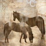 Equine I Poster by Jason Mann