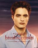 Breaking Dawn-Edward - Reprodüksiyon
