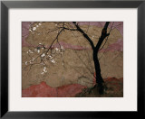 Plum Tree against a Colorful Temple Wall Framed Photo by Raymond Gehman