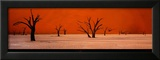 Namibie Prints by Philippe Bourseiller