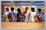 Pink Floyd Kunstdruk geperst op hout