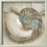 Coastal Gems IV Prints by John Seba