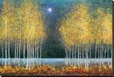Blå måne Lærredstryk på blindramme af Melissa Graves-Brown