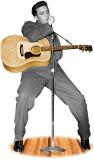Elvis Presley TALKING Cardboard Cutouts