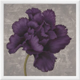 Black Plum I Framed Canvas Print by Ariane Martine