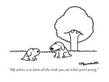"""My advice is to learn all the tricks you can while you're young."" - New Yorker Cartoon Premium Giclee Print by Charles Barsotti"