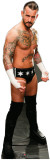 CM Punk - WWE Cardboard Cutouts