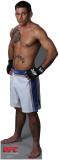 Joe Brammer - UFC Cardboard Cutouts