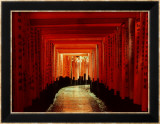 Tunnel of Torii-Arches, Fushimi Inari Shrine, Kyoto, Japan Framed Photographic Print
