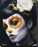 Victoria Stretched Canvas Print by Daniel Esparza