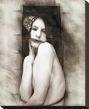 The Black Dahlia Stretched Canvas Print by David DeFigueredo