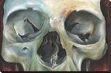 Skull Study Stretched Canvas Print by Nakota Hedrick