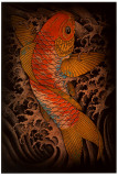 Koi Posters by Clark North