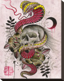 Cobra & Skull Stretched Canvas Print by Samuel Gosson