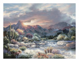 Sonoran Sunrise Print by James Lee