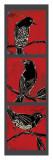 Black Birds Poster by Mark Gleberzon