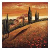 Santo De Vita - Sunset Over Tuscany I Obrazy
