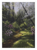 Spring Woods Posters by Lene Alston Casey