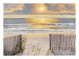 Beach Light Prints by Diane Romanello