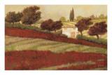 Furtesen - Apapaveri Toscana I Reprodukce