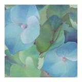 Hydrangeas Prints by Leni Betes