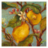 Lemons on a Branch Print by Nicole Etienne