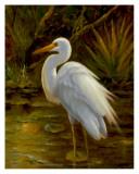 Tropical Egret II Prints by  Kilian