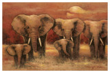 Bull Elephants Prints by Kanayo Ede