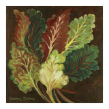 Red Chard Prints by Suzanne Etienne