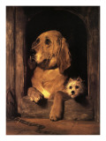Dignity and Impudence Prints by Edwin Henry Landseer