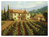 Tuscan Vineyard Art by Roger Williams
