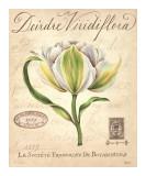 Deirdre Viridiflora Print by Constance Lael