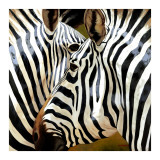 Zebra Close-up Posters by  Arcobaleno